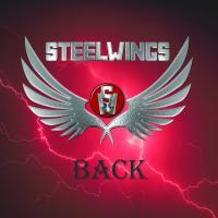 Steelwings back 1